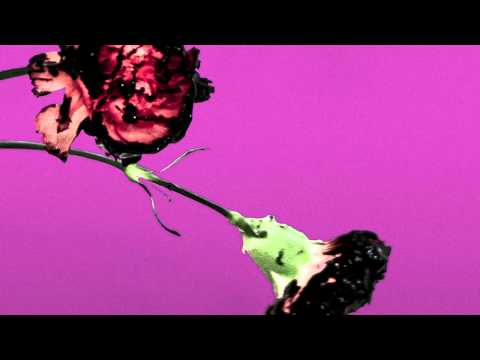 You & I (Nobody in the World) (R3hab Remix - Radio Edit)