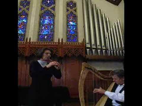 Ode to Joy on Whistle & Harp