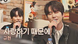 밀크 초콜릿으로 인정받은 규현(KyuHyun)의 고백송💘 〈사랑하기 때문에〉♪ 유명가수전(famous singers) 3회   JTBC 210416 방송