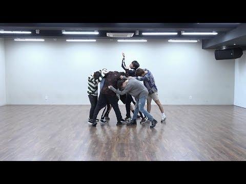 BTS (방탄소년단) - FAKE LOVE Dance Practice (Mirrored)