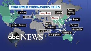 Global effort to contain the coronavirus