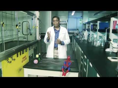 Science Xplained: Spidey Science - YouTube