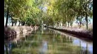 Paseo en barco por un canal