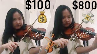 $100 Vs $800 Violin!! Can You Hear The Difference?