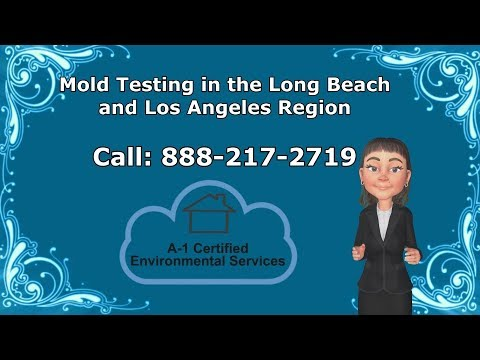 Mold Testing Whittier