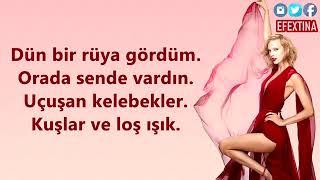 Blank Space-Taylor Swift / Turkish Version ( Türkçe Versiyon ) Cover By Efe Burak