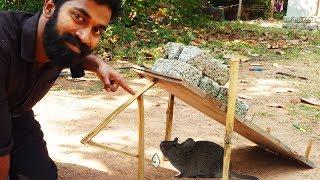 എലിക്ക് ഇഷ്ടപെട്ട എലിക്കെണി |Mouse Trap |
