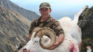 Hunting Compilation 2. Mountain Animals . Dall Sheep, Mountain Goat, Ibex, Tahr, Chamois, Sitka Deer