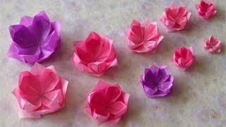 Origami - Hướng dẫn cách gấp HOA SEN VIỆT NAM