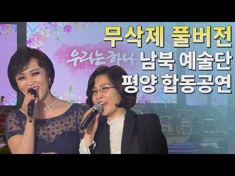 [무삭제 풀버전] '우리는 하나'...남북평화협력기원 평양공연 / 연합뉴스TV (YonhapnewsTV)