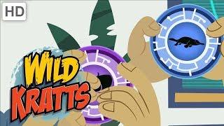 Wild Kratts - Top Season 3 Moments (76 Minutes!) | Kids Videos