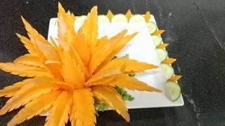 Hướng dẫn tỉa hoa chùm từ cà rốt - Cú Đêm