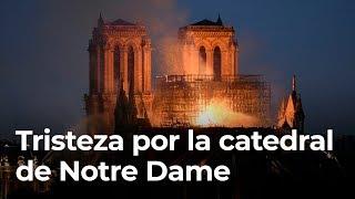 Tristeza por la catedral  de Notre Dame