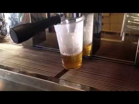Brewing Jasmine Tea - Fanale Drinks