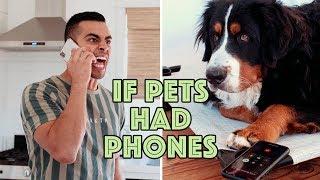 If Pets Had Phones   David Lopez