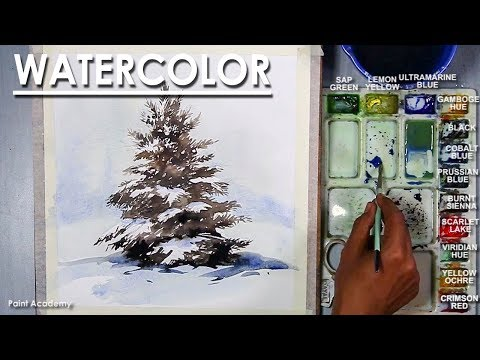 How to Paint A Winter Pine Tree in Watercolor, Artist-Composer: Supriyo