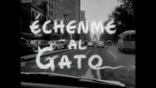 RESORTES  ECHENME AL GATO  Y PIPORRO.