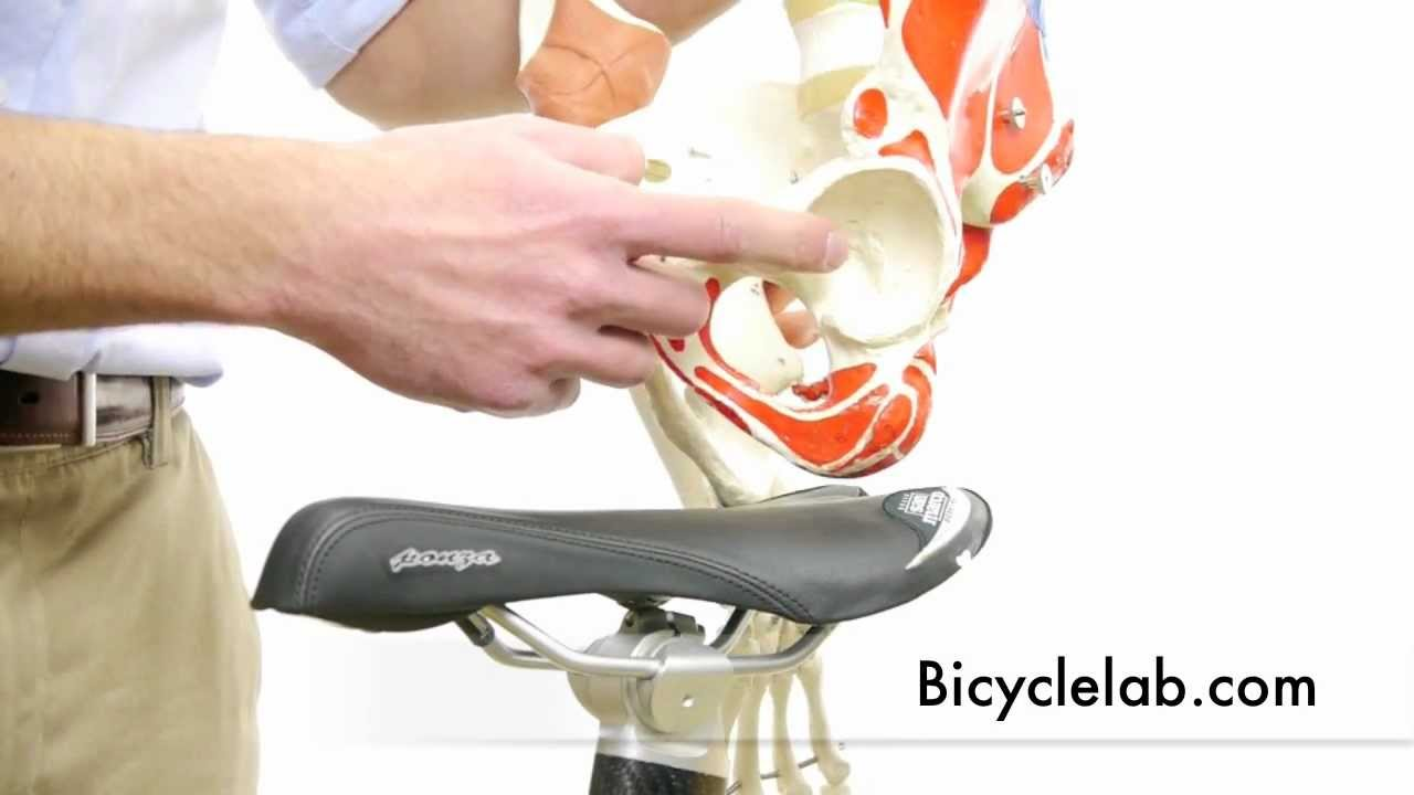 Bicycle Saddle First Video In Series About Seat Comfort