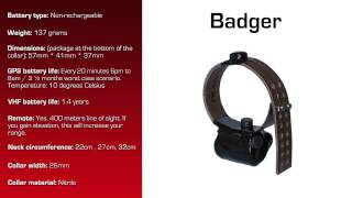 Watch video - GPS Collar for Badger