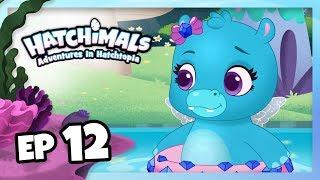 Hatchimals | Adventures in Hatchtopia: Mermal Magic | Episode 12 – Racing River, Part I