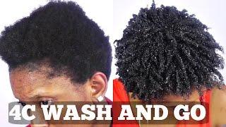 Wash and Go Short Natural 4C Hair Tutorial