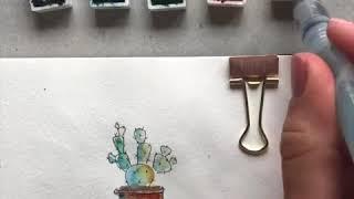 Vẽ màu nước cây xương rồng với bút line của Artline