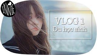 Vlog 01   Du học sinh Nhật: 10 năm và những bước ngoặt