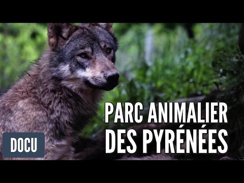 Parc Animalier des Pyrénées - Reportage 2014