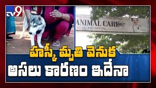 Veterinary doctor booked over the death of a pet dog at CM..