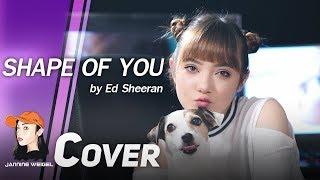 Ed Sheeran - Shape of You cover by Jannine Weigel ft.Tyler & Ryan