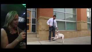 Best Proposal Video Ever