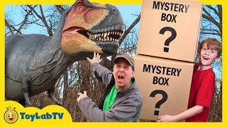 Dinosaur Mystery Box Challenge! Giant Life Size Dinosaurs for Kids & Playground Adventure with Toys