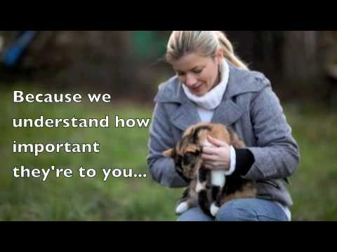 Reliable Pet Care Providers