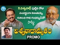 Director Viswanath birthday special video, promo