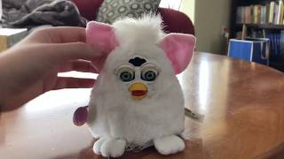 Birth of the Long Furby
