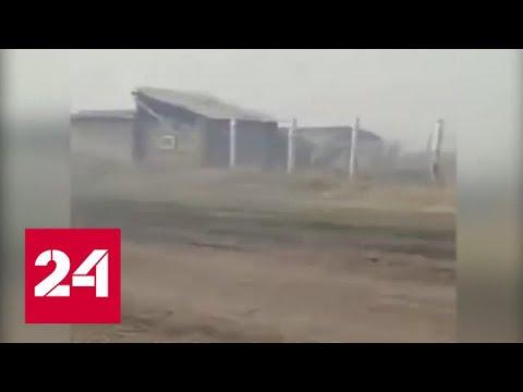 В деревне Каракуль Омской области пожар уничтожил жилые дома – Россия 24 
