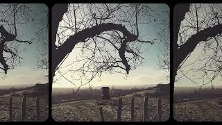 Astralingua - The Fallen