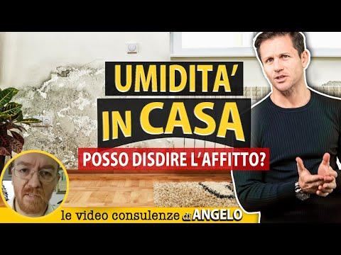 DISDETTA AFFITTO per umidità | Avv. Angelo Greco