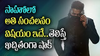 Reason Behind Sahoo Movie Interesting Action Scenes..