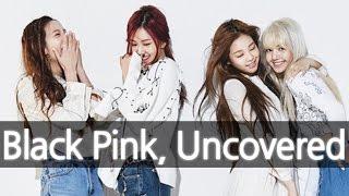 'BLACKPINK' (New YG Girl Group) Uncovered 블랙핑크 [ENG SUB]