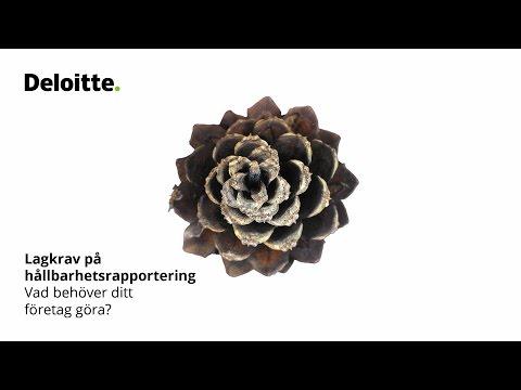Lagkrav på hållbarhetsrapportering - Deloittes råd till företag