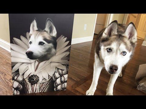 Crown & Pet Portrait Unboxing: Queen Laika the Husky!