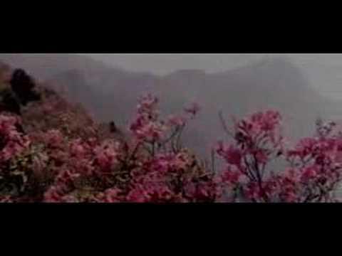 庐山恋插曲---故乡, homesick