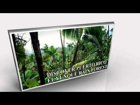 Puerto Rico Tours, Puerto Rico Transportation Company With VIP tours And transportation Services
