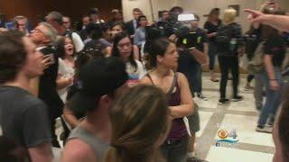 Rally In Tally For Common Sense Gun Laws
