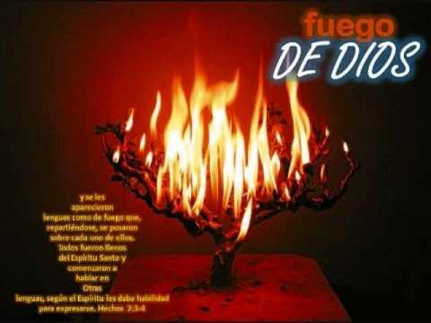 Santiago Torres Jr Coro de fuego Live