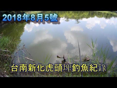 手竿 浮標 池釣 新化虎頭埤 激戰大吳郭魚 釣魚紀錄 Taiwan fishing