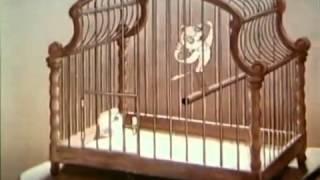 Hitlers Traum von Micky Maus - Zeichentrick unterm Hakenkreuz