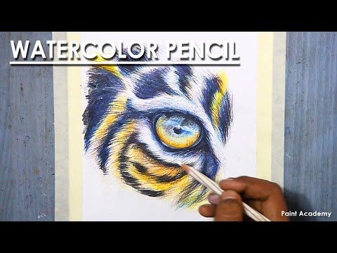Watercolor Pencil : How to Draw Tiger eye and Fur