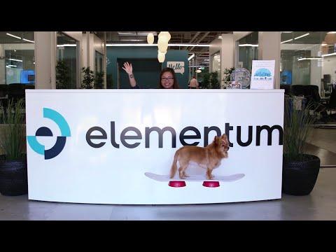 Working at Elementum
